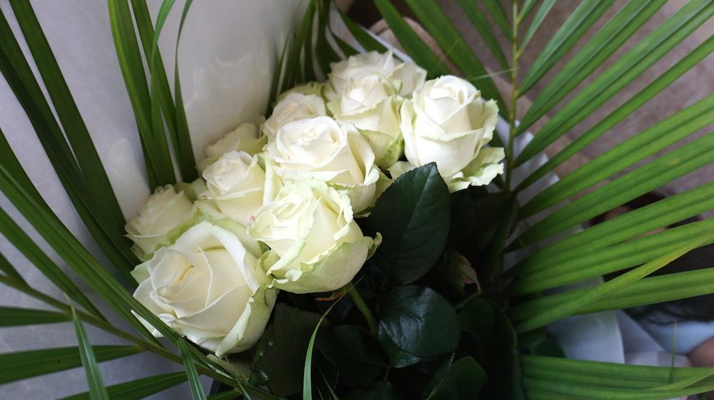 こちらがアバランチェ。白い薔薇の中でも花弁が大柄で存在感があります。